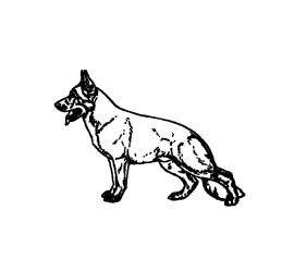 ikona-pes